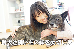 犬のしつけには飼い主と犬の絆が大切