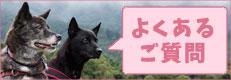 犬の保育園・よくあるご質問QandA