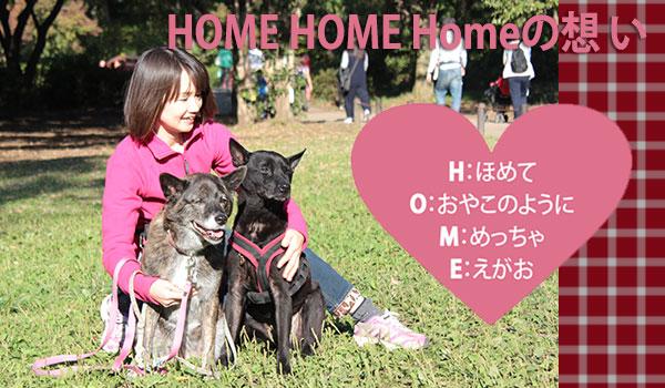 横浜市の犬の保育園 HomeHome HOME