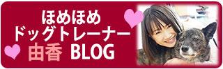ほめほめドッグトレーナー由香ブログ