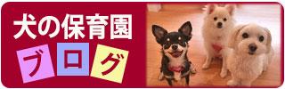犬の保育園 ブログ